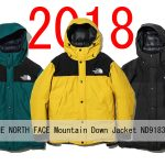【2018FW】ザ・ノースフェイス マウンテンダウンジャケット ND91837 ゴアテックス ¥66,960